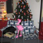 QLP Christmas Decorating Contest Winner