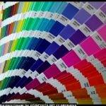 Pantone (PMS) Color Swatches