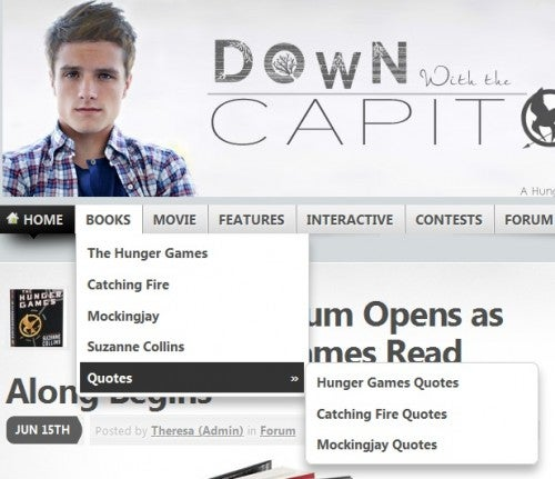 Down With the Capitol Site Navigation