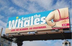 Peta's billboard falls flat.
