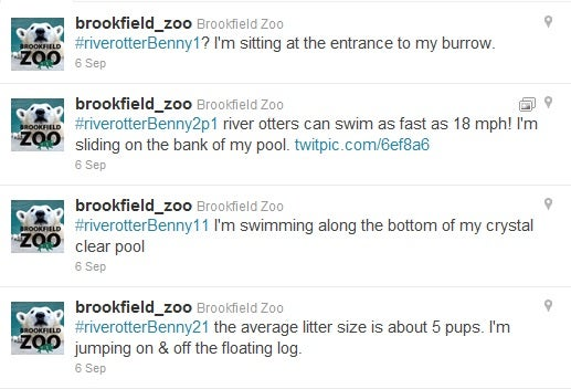 Brookfield Zoo Twitter Feed