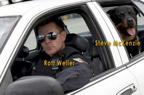 police cop dog cruiser car