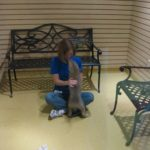 Tails Humane Society: Visiting Room