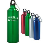 Alpine Aluminum Water Bottle