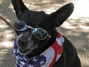 I'm ready for that close up now, America.