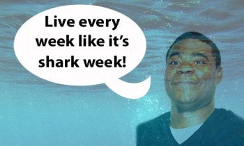 Shark Infested Social Media: How Discovery Built Anticipation for Shark Week