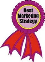 Best Marketing Strategy (Mid/Large Company)