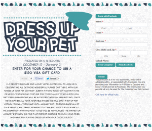 k9 resorts dress your pet contest