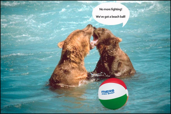 bears with beach balls