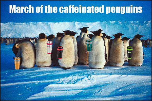 march of caffeinated penguins