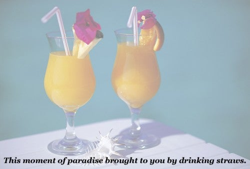 tropical drinking straws