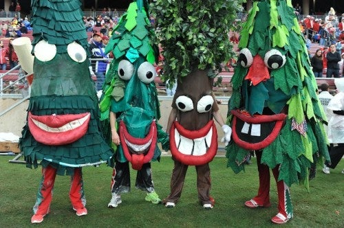 Stanford Tree tryouts.  Do you have what it takes?  I hope not.