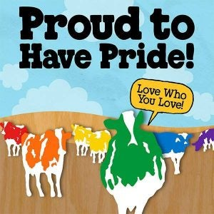 ben and jerry's pride month