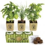 growpot-eco-planter-herb-3pack-extralarge