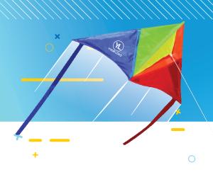 custom kites