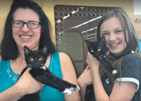 Cats with Loving Family