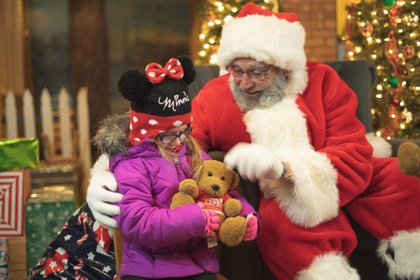 Teddy bears donated to Blackberry Farm for their Holiday Express event