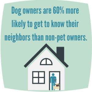 Stat about dog owners