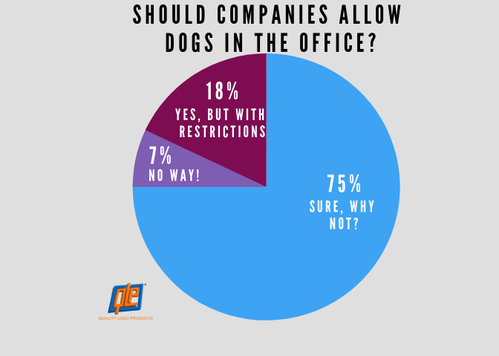Should companies allow dogs at work?