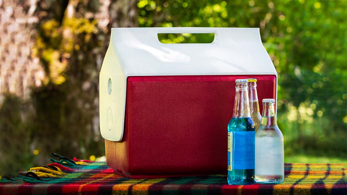 history-of-portable-coolers