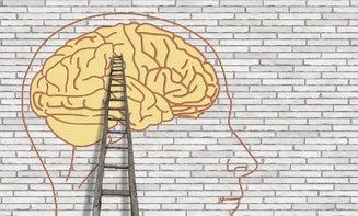 Climbing to the brain