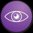 eye tracking graphic