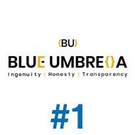 Blue umbrella design #1