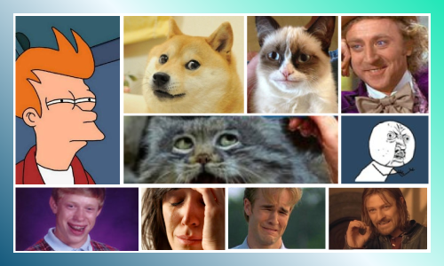 collage of popular memes