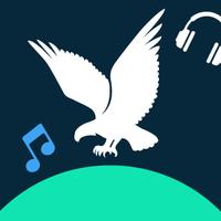 American Eagle playlist