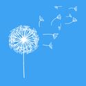dandelion graphic