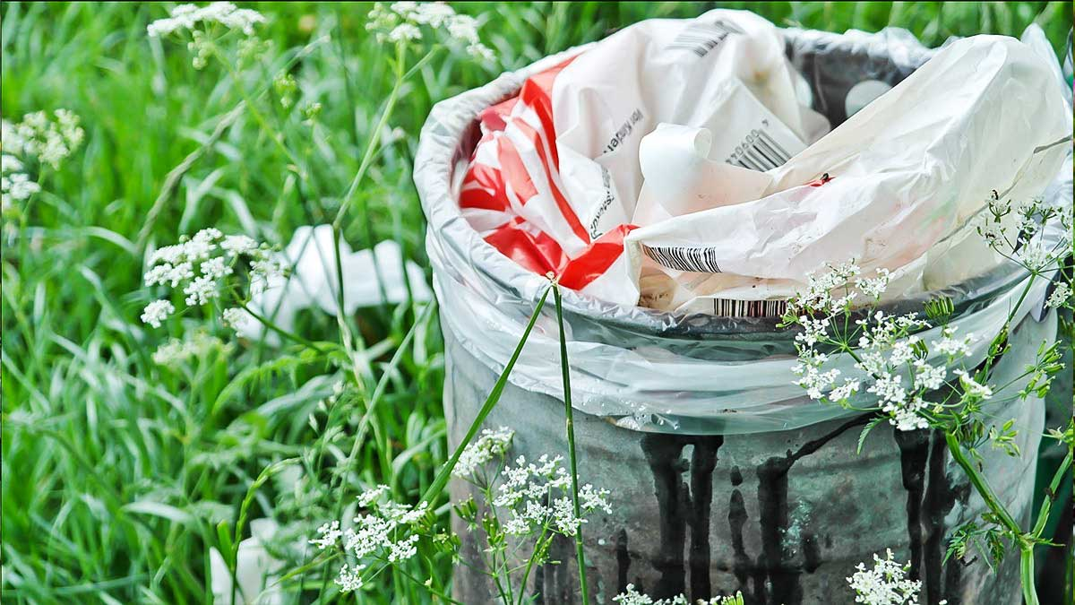 can-you-recycle-plastic-bags