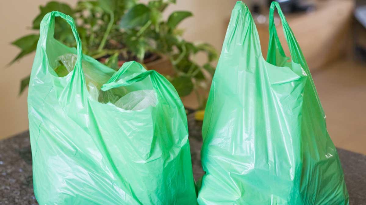 history-of-iplastic-bags