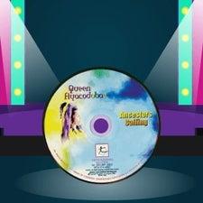 demo discs