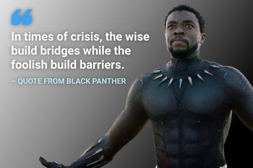 in times of crisis, the wise build bridges black panther quote
