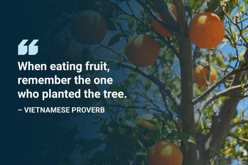 when eating fruit remember who planted the tree