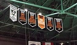 Anaheim Ducks pennants