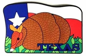 Texas refrigerator magnet