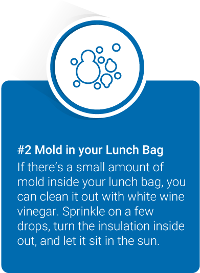 If there's a small amount of mold inside your lunch bag, you can clean it out with white wine vinegar. Sprinkle on a few drops, turn the insulation inside out, and let it sit in the sun.