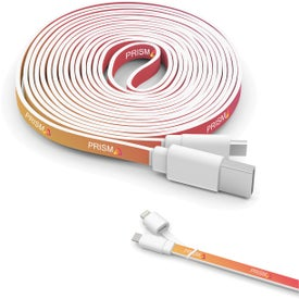 10 Foot Branded Twin Tip Cable