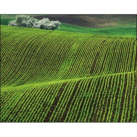 Agriculture Spiral Calendar for Customization