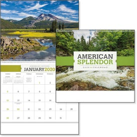 American Splendor Large Wall Calendar (2020)