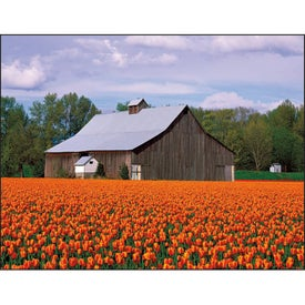 Barns Appointment Calendar for Your Organization