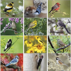 Birds Appointment Calendar for your School