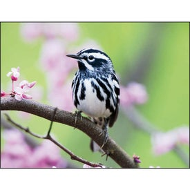 Birds Appointment Calendar for Marketing