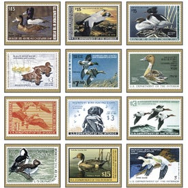 Duck Stamp Appointment Calendar for Marketing