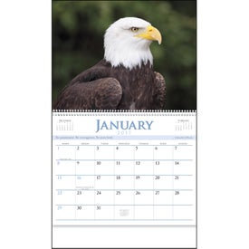 Eagles Appointment Calendar for your School