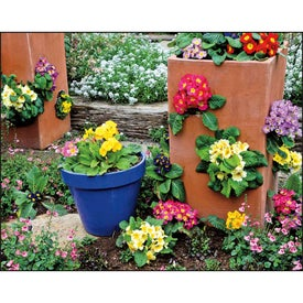 Garden Walk Window Calendar for Your Organization