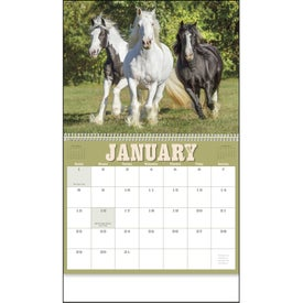 Horses 12 Month Appointment Calendar for Promotion