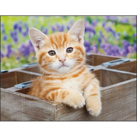 Kittens 12 Month Appointment Calendar for Marketing