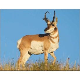 Promotional North American Wildlife Wall Calendar